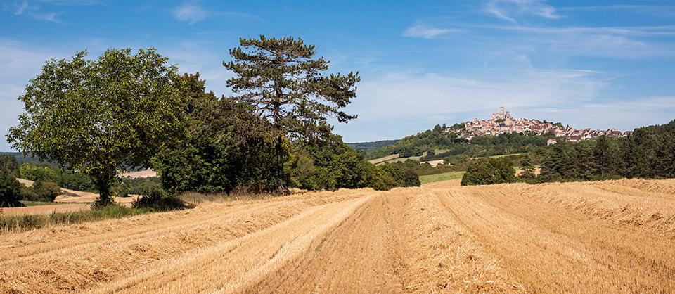 On the route of Compostela, Vezelay, 20 mins from Rix, ...